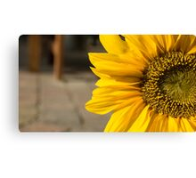Welcome to the Sunflower Canvas Print