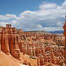 Bryce Canyon National Park by Brendan Schoon