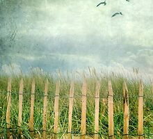 dunes by Joana Kruse