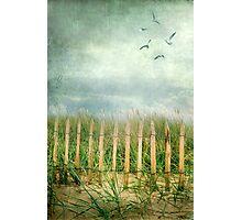 dunes Photographic Print