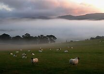 mist in the valley by dinghysailor1