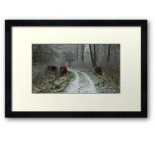 Winter's Survivors Framed Print