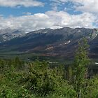 Kootenay National Park, Panoramic View by Brendan Schoon