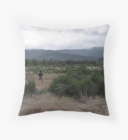 The Epic Story. Throw Pillow