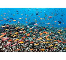 Rainbowed Sea Photographic Print