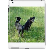 Bert and Earnie, out for a walk iPad Case/Skin