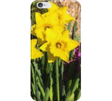 Sunny Daffodil Bouquet – Impressions Of Spring iPhone Case/Skin