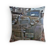 Hunky Dory? Throw Pillow
