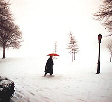 Lady walking through Central Park in snowstorm by Daniel Sorine