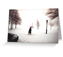 Lady walking through Central Park in snowstorm Greeting Card