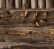 Weathered Wooden Abstracts – 4 – Vertical by Georgia Mizuleva