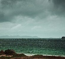 The Storm by Lisa Wilson
