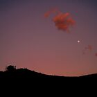 Red Landscape by Dea B