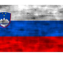 Distressed Slovenia Flag by kwg2200