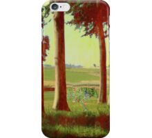 Daisy's in the field iPhone Case/Skin