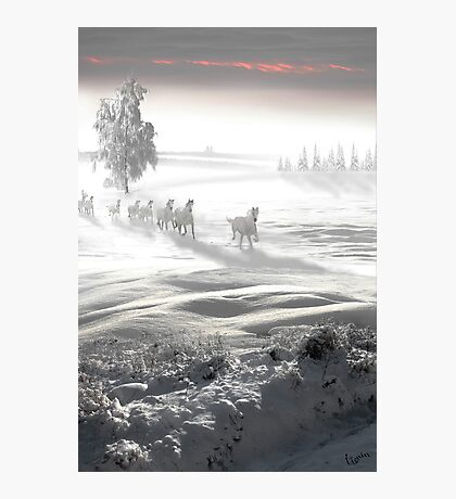 White Spirit Photographic Print