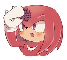 Knuckles the Echidna (Sonic the Hedgehog) by SonicIsFree