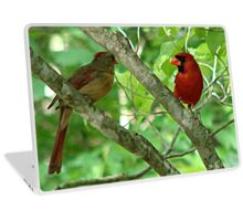 Northern Cardinal Pair - female and male Laptop Skin