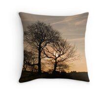 Brassington: Derbyshire Throw Pillow