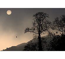 Sunrise Haiku Photographic Print