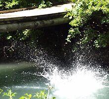 River Splash by kimbarose