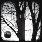 Lunar - TTV by Kitsmumma