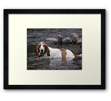 Time to cool off Framed Print