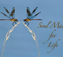 Soul Mates for Life!  by Bonnie T.  Barry