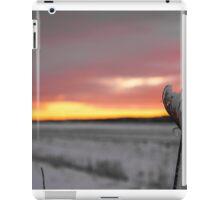 A Winter Sunrise by Bridget Havercroft iPad Case/Skin