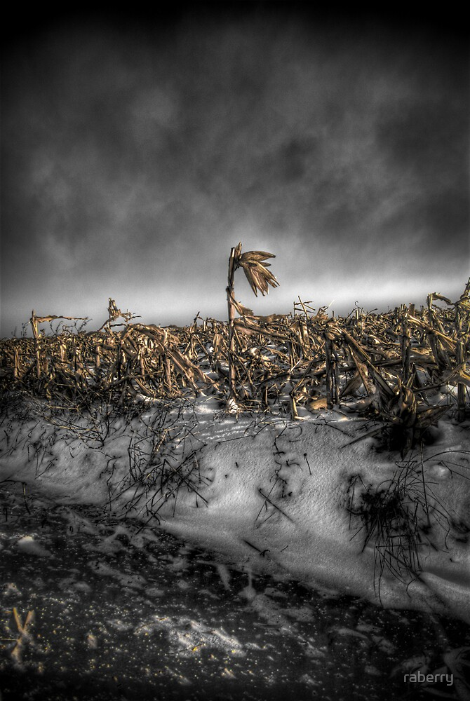 """""""One Stands Tall""""   Selective Color Version"""" by raberry"""
