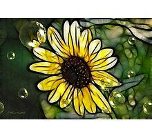 Sunshine Bright Photographic Print