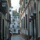Barrio Santa Cruz, Seville, Spain by John  Lambert