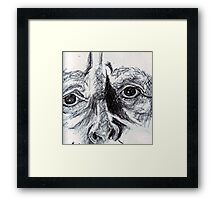 Meaningful Look Framed Print