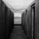 Walk of gloom by flyfish70
