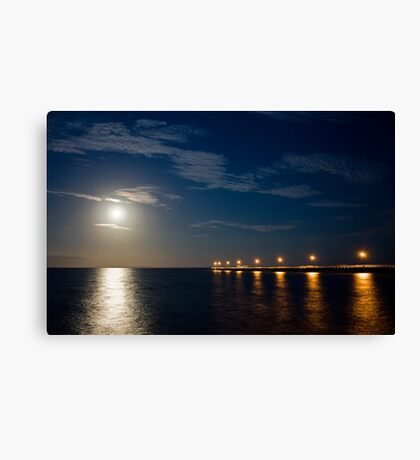 Tranquil Moonlight Canvas Print