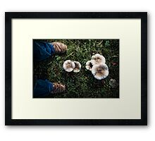 Me and some mushrooms Framed Print