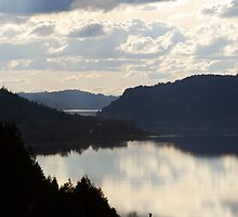 Columbia River by Jenny Ryan