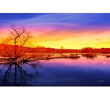 Tranquil Tree Reflection Sunset Photographic Print