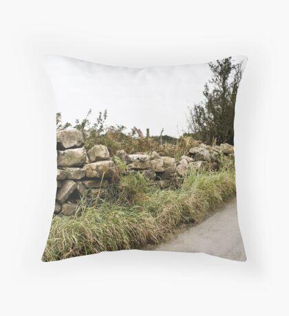 Crumbling Wall Throw Pillow