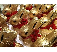 CHOCOLATE EASTER BUNNIES Photographic Print