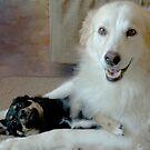 Puppy Love by rasnidreamer
