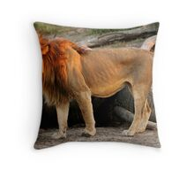 Lion eating an elephant Throw Pillow