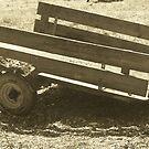 At The Farm by randi1972