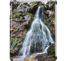 Varciorogului waterfall in Romania iPad Case/Skin