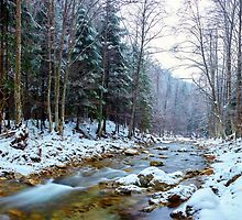 Oltetului river and pass in Romania by naturalis
