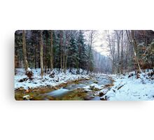 Oltetului river and pass in Romania Canvas Print