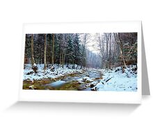 Oltetului river and pass in Romania Greeting Card