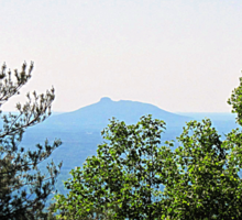 pilot mountain as seen from parkway Sticker
