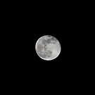 Full Moon December  2008 by Francesca Rizzo