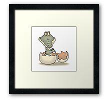 Alligator Hatchling Framed Print